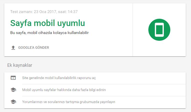 Sayfa Mobil Uyumlu Sonucu